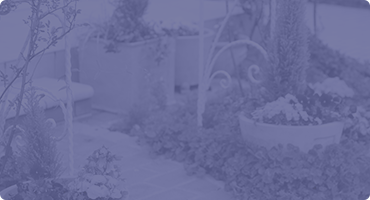 東近江市の造園・外構工事・留守宅管理なら花久造園へ 自然に関心がある人