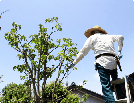 東近江市の造園・外構工事・留守宅管理なら花久造園へ 庭園管理