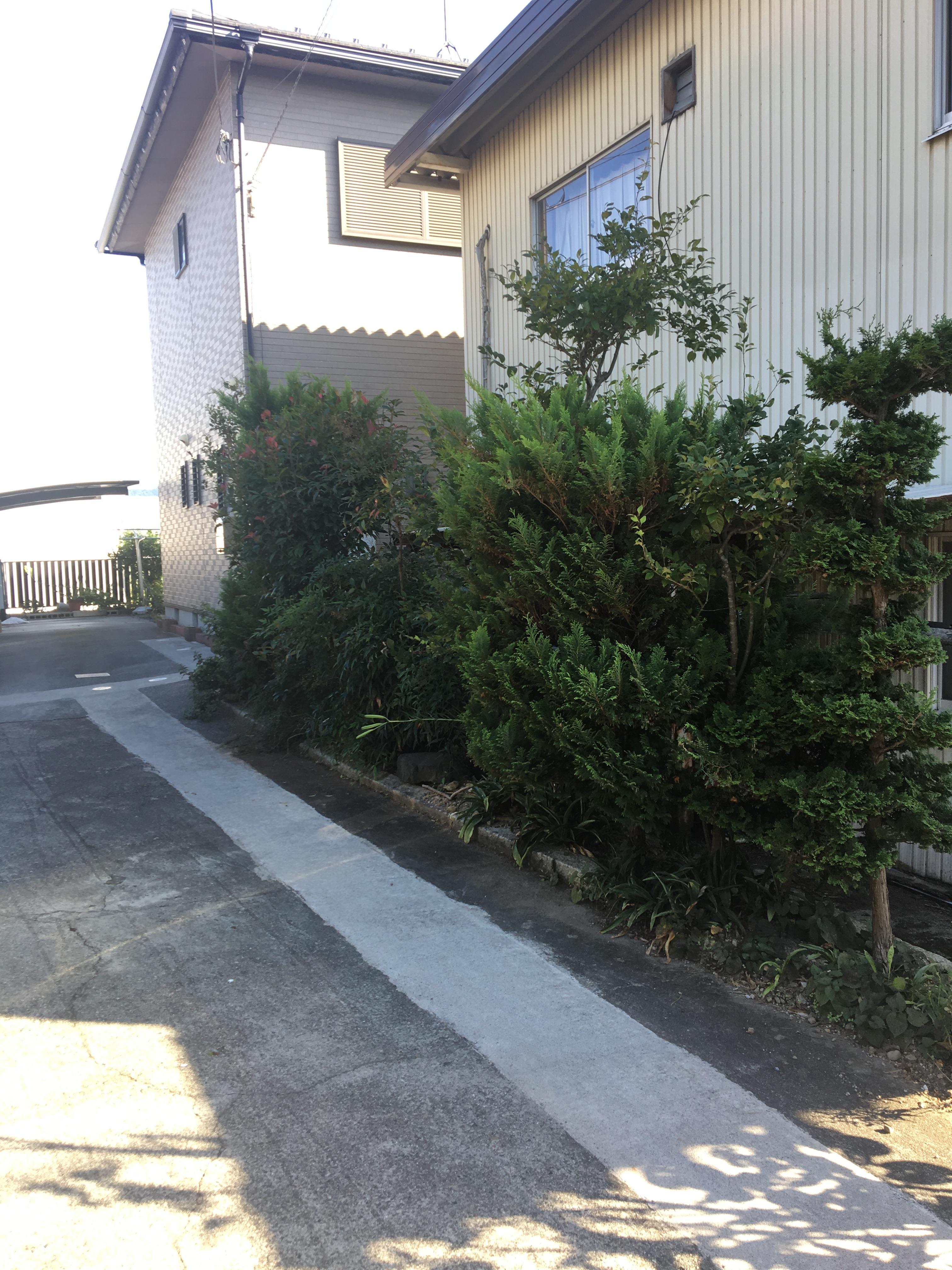 東近江市の造園・外構工事・留守宅管理なら花久造園へ 雪害対策